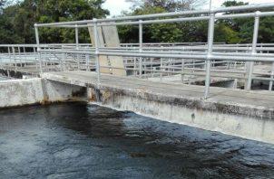 En estos momentos señala el director del IDAAN se realizan mejoras al lugar de captación de agua cruda del río David y se trabaja en la construcción de un muro tipo trinchera para la retención de agua.