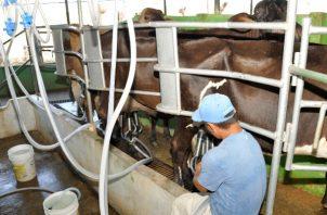 Productores de leche grado c estaban afectados por el cobro de arancel erróneo.
