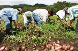 Las cifras oficiales demuestran que el sector agropecuario viene en picada desde hace varios años.