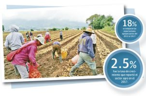 La participación del sector agropecuario en el PIB cayó de 2.3% a 1.9% del 2013 al 2017.