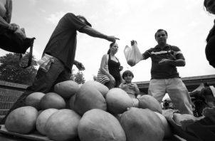 El agricultor se empeña por producir, de sol a sol, los productos que ponemos en nuestras mesas. Foto: EPASA.