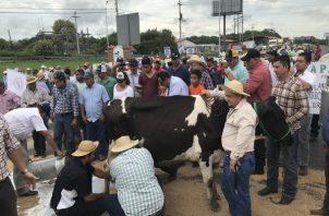 Productores manifestaron sentirse preocaupados por la situación que vive el agro panameño.