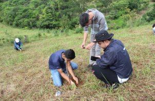 Hasta la fecha, restaurado 27.39 hectáreas específicamente en la cuenca hidrográfica del río La Villa