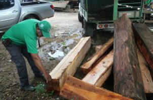 Se investiga el origen de la madera retenida. Foto: Thays Domínguez.
