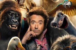 Robert Downey Jr., quien es conocido por su papel como Iron Man, ahora interpretará al Dr. Dolittle.