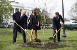 El 23 de abril de 2018 el presidente galo, Emmanuel Macron (d), y el presidente de EEUU, Donald Trump (c), plantaron un roble en los jardines de la Casa Blanca. FOTO/EFE