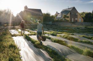 Residentes y granjeros de Langouët apoyan en gran parte el veto a pesticidas. Una granja amigable con el ambiente. Foto/ Andrea Mantovani para The New York Times.