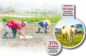 El sector agro está en franca decadencia por las importaciones desmedidas que se han registrado en los últimos años, tal como han denunciado en reiteradas ocasiones.