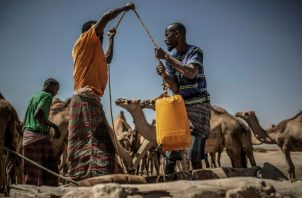 La sequía ha dejado a 7,6 millones de personas en riesgo de hambre extrema.