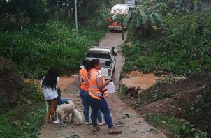 Granizada, caída de árboles y voladura de techos en Panamá Oeste. Foto: Tráfico C. Panamá.