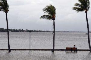 El director del Sinaproc no demeritó la fuerza de los vientos de la semana anterior, pero dejó claro que no son huracanados. Foto de EFE