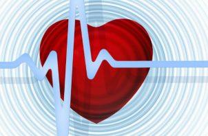 El corazón es el motor del organismo. Foto Pixabay.