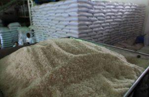 Ministro de Desarrollo Agropecuario, Eduardo Carles, reconoció la incineración de 37 mil quintales de arroz. Foto/Archivos