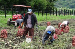 Amplían la cobertura de los beneficios del programa de transformación agropecuaria