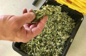 El funcionario tenía dos sobres con presunta marihuana dentro de su auto. Foto: Ilustrativa.