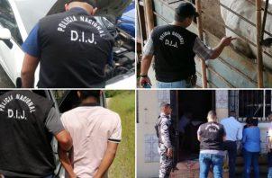 La denuncia de hurto de reses fueron procesadas en Chiriquí, Los Santos y Herrera. Foto: Policía Nacional.