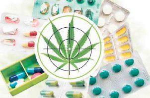 Nuevamente, su uso medicinal se encuentra en la Asamblea. Ilustración de Epasa