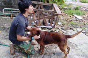 El perro era maltratado por su dueño, según denunciaron ciudadanos a través de las redes sociales.