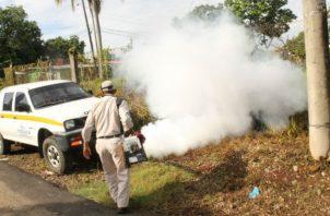 Evitar la proliferación de mosquitos depende de la población y las autoridades en un trabajo conjunto. Foto:Archivo/Ilustrativa.