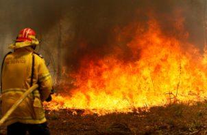 Los bomberos trabajan para contener un incendio forestal a lo largo de la carretera Old Bar en Old Bar, Nueva Gales del Sur, Australia. FOTO/AP