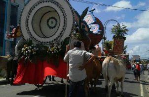 Yuntas de bueyes de Natá  son los encargados de guiar las carretas durante las festividades en La Chorrera. Cortesía