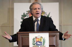 El secretario general de la Organización de Estados Americanos (OEA), felicitó al equipo encargado de hacer la auditoria después de las elecciones en Bolivia, las cuales fueron rechazadas por la oposición quien adujo que hubo fraude y exigían una segunda