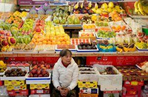 Temen que peste porcina africana entre a través de  productos contaminados. Foto: EFE.