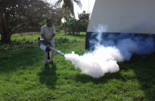 Se mantienen los trabajos de fumigación en la región. Foto/Thays Domínguez