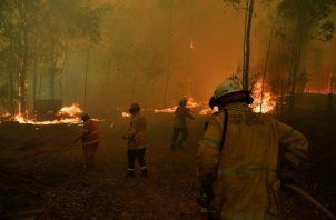 Los incendios, que han matado a seis personas y calcinado 500 viviendas y 13.000 kilómetros cuadrados desde el pasado 1 de julio. FOTO/AP