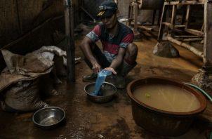 Un minero con un trozo de oro y mercurio. Esta técnica es la principal causa de contaminación con mercurio. Foto/ Adam Dean.