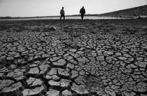 La estación seca producirá la desaparición de afluentes de agua dulce entre diciembre de 2019 y marzo de 2020. Foto: EFE.