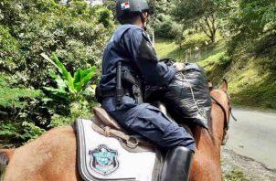 Policía Montada opera de manera preventiva en el Valle de Antón. Foto/Cortesía