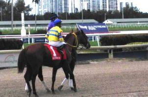 Fray Angélico logró $10 mil por su tercer lugar.