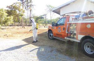 El año pasado se registró la muerte de un ciudadano por picada de abejas y se registraron más de 20 ataques a personas en los distritos de David, Bugaba, San Lorenzo y Alanje.