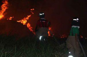 Los incendios se incrementan en la temporada seca.