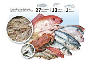 La exportación de camarón ha decrecido en los últimos años.