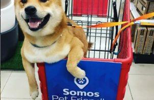 Cada vez más comercios ofrecen a sus clientes la posibilidad de ir acompañados de sus mascotas. Foto: Perritos amigos.
