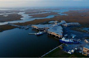 El Centro Marino W.J. DeFelice toma acciones para mitigar el riesgo de inundación al aumentar el nivel del mar. Foto / Bryan Tarnowski para The New York Times.