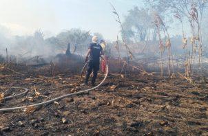 Poco después de registrado el incendio del maizal, las unidades bomberiles fueron alertadas de un segundo incendio, esta vez en Las Tablas, en la vía que conduce a playa El Uverito. Foto/Thays Domínguez