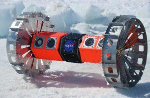 NASA está probando un rover que buscará vida en la luna oceánica de Júpiter. Foto / Kevin Peter Hand.