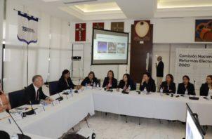 Fábrega ha reiterado que la consulta será transparente. Foto: Archivo