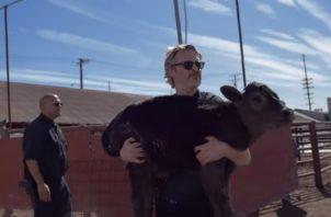 Joaquin Phoenix carga a Indigo. Foto: YouTube