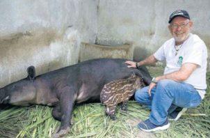 Itzia nuevo residente del Zoológico Nacional de Managua. Foto/EFE