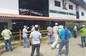 Los ganaderos se acercaron al sitio en busca de respuestas. Foto: Thays Domínguez