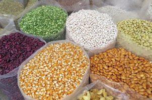 Actualmente el Laboratorio de Semillas está procesando muestras de semillas de hortalizas, arroz y pasto. Foto/Archivo