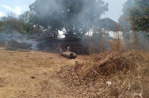 Según las estadísticas del Cuerpo de Bomberos de Panamá, el mes de enero cerró con 116 incendios, 284 en febrero, 363 en marzo y 51 hasta la segunda semana de abril. Foto/Eric Montenegro