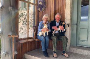 Esta fue la foto compartida el día de su aniversario. Ellos se casaron después de más de 30 años juntos. Instagram