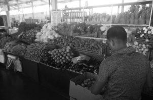 La actual situación ha demostrado la importancia de la producción nacional para lograr la seguridad alimentaria, lo que evidencia la necesidad de proteger tanto la actividad agropecuaria como agroindustrial. Foto: Víctor Arosemena.