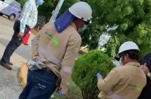 Personal de Ensa que realizó el corte de suministro de energía eléctrica al apartamento.