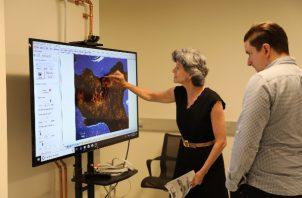 Colette Loll, fundadora de Art Fraud Insights, examina una imagen de uno de los manuscritos falsos del Mar Muerto. Foto / vía museo de la biblia.